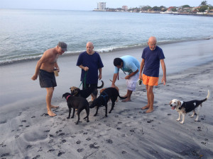 Greeting friends & dogs at the beach